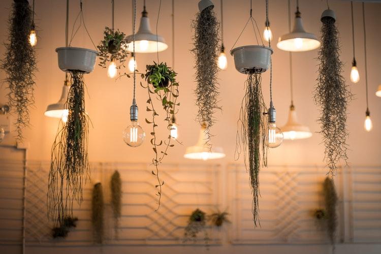 pflanzen hängend, zimmerpflanzen, badezimmer, grün, wohntrend, einrichtung, blog, inneneinrichtung, bad ideen, dekoration, pflanzen, natur